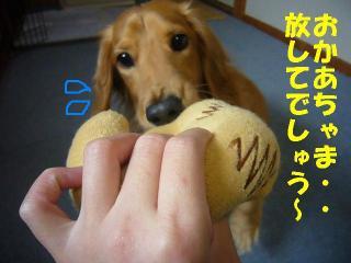 放させ~!