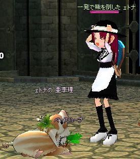 mabinogi_2007_08_14_002.jpg