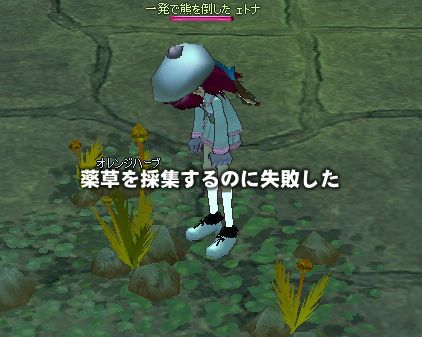 mabinogi_2007_08_14_007.jpg