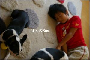ナナとSun