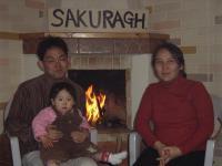 sakurasakurasakura.jpg