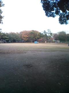 高根木戸公園