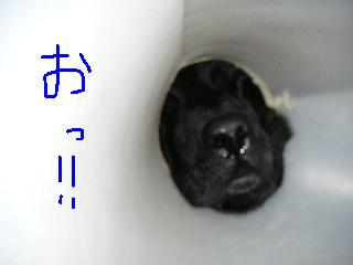 20061019-6.jpg