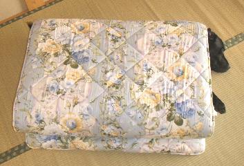 20061104-2.jpg