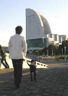 20061107-3.jpg