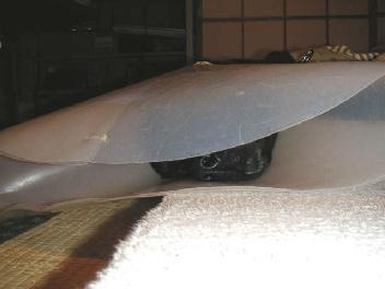 20070305-11.jpg