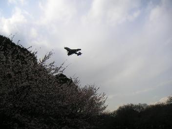20070319-8.jpg