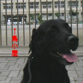 20070609-02.jpg