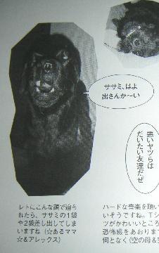 20070616-1.jpg