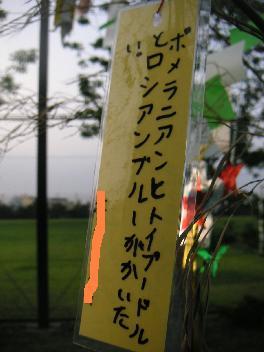 20070707-4.jpg