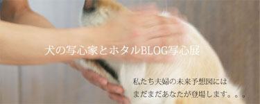 bana-3.jpg