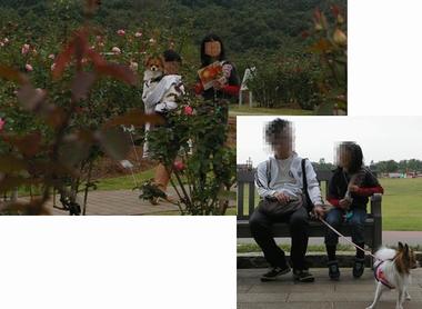 20061012-3.jpg
