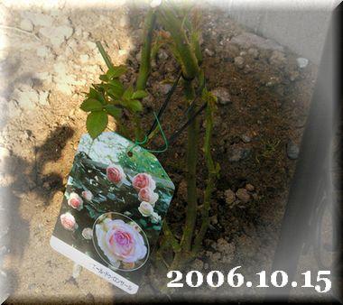20061015-0.jpg