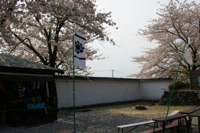 200651-2.jpg