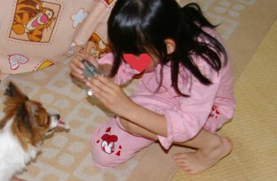 2006524-1.jpg