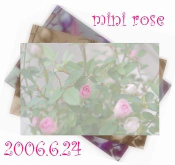 2006625-2.jpg