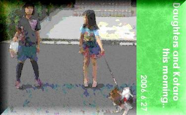 2006627-3.jpg