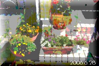 2006628-2.jpg