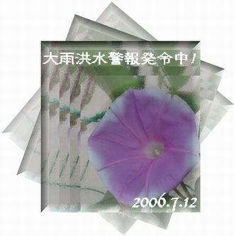 2006712-0.jpg