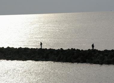 2006721-1.jpg