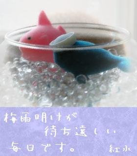 2006729-0.jpg