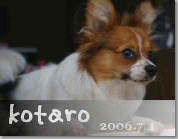 200674-3.jpg
