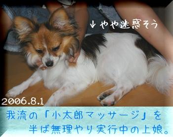 200681-2.jpg