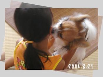 2006821-0.jpg