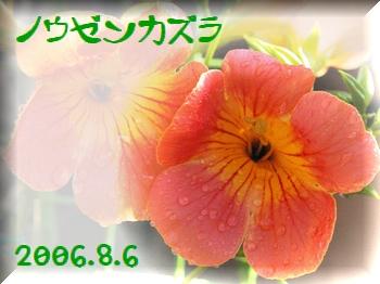 200686-0.jpg