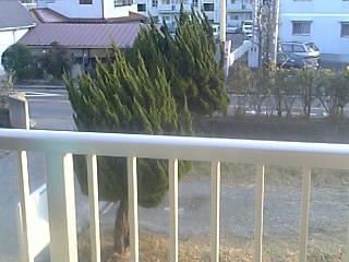 ベランダから見た図。雪溶けた。