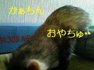 独り占め3