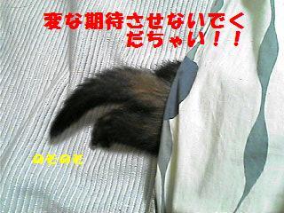 ぷんぷん!!!