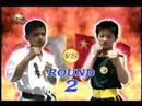 KyokushinKarate_vs_ShoalinXanda.jpg