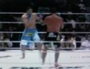 shogun_vs_nakamura_2006.1.31.jpg