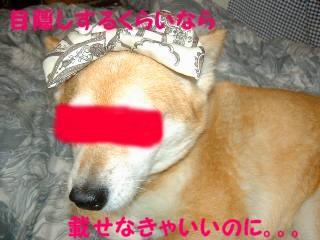 20070720081416.jpg