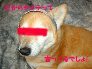 20070720081731.jpg