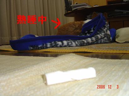 20061203210411.jpg