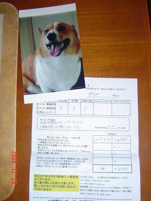 20061229175155.jpg