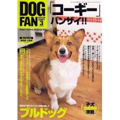 dogfan2007.3.jpg
