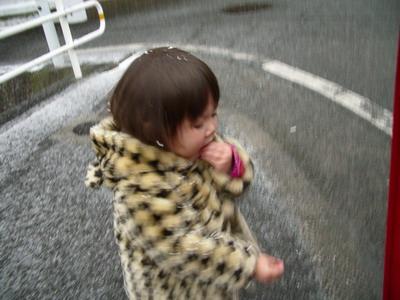 20070203033544.jpg