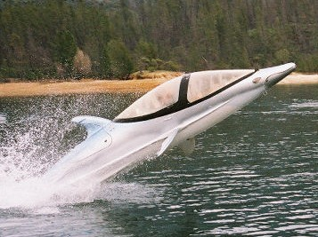 イルカ型ボート