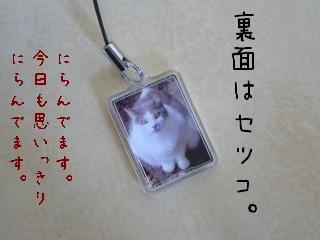 s-P1170434.jpg